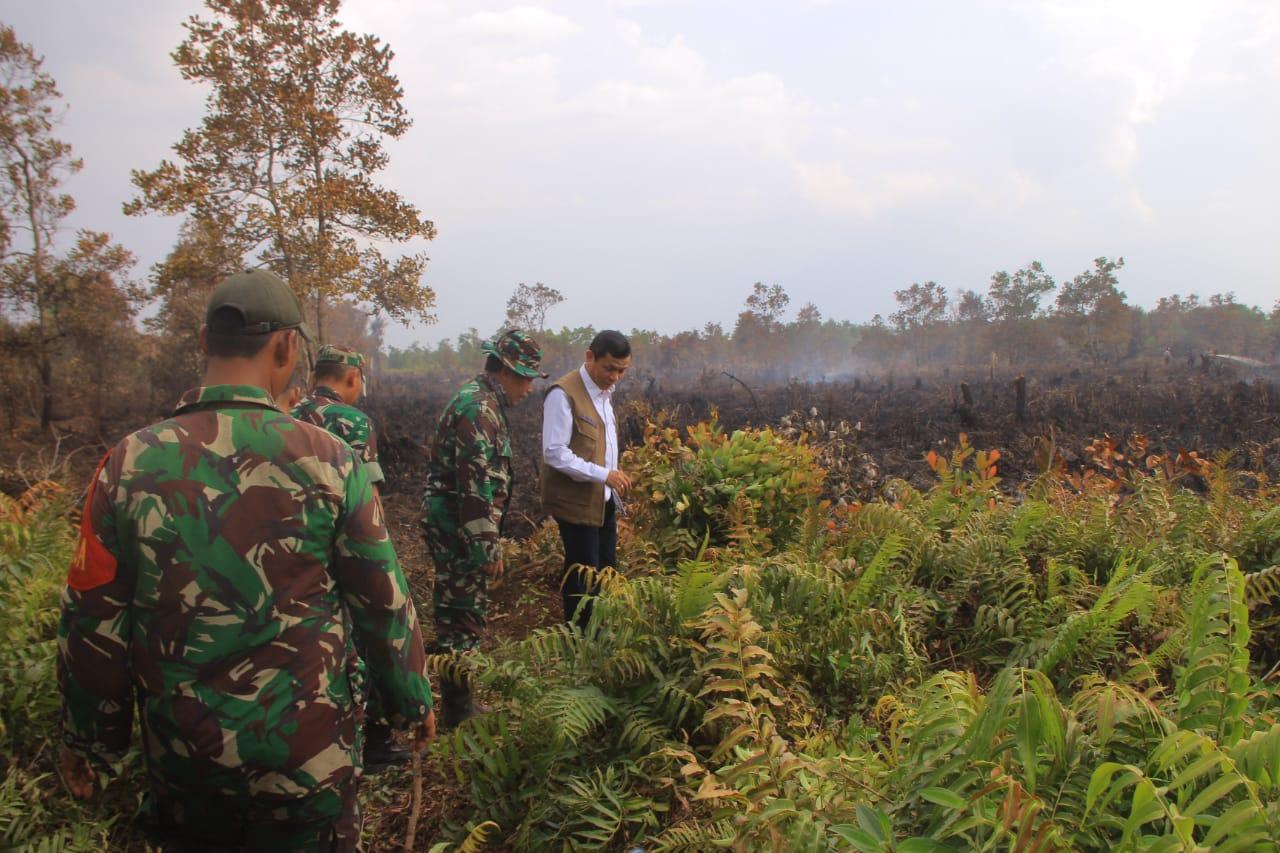 TNI Tegaskan, Akan Beri Sangsi Kepala Pelaku Pembakaran Hutan dan Lahan Di Gambut 4