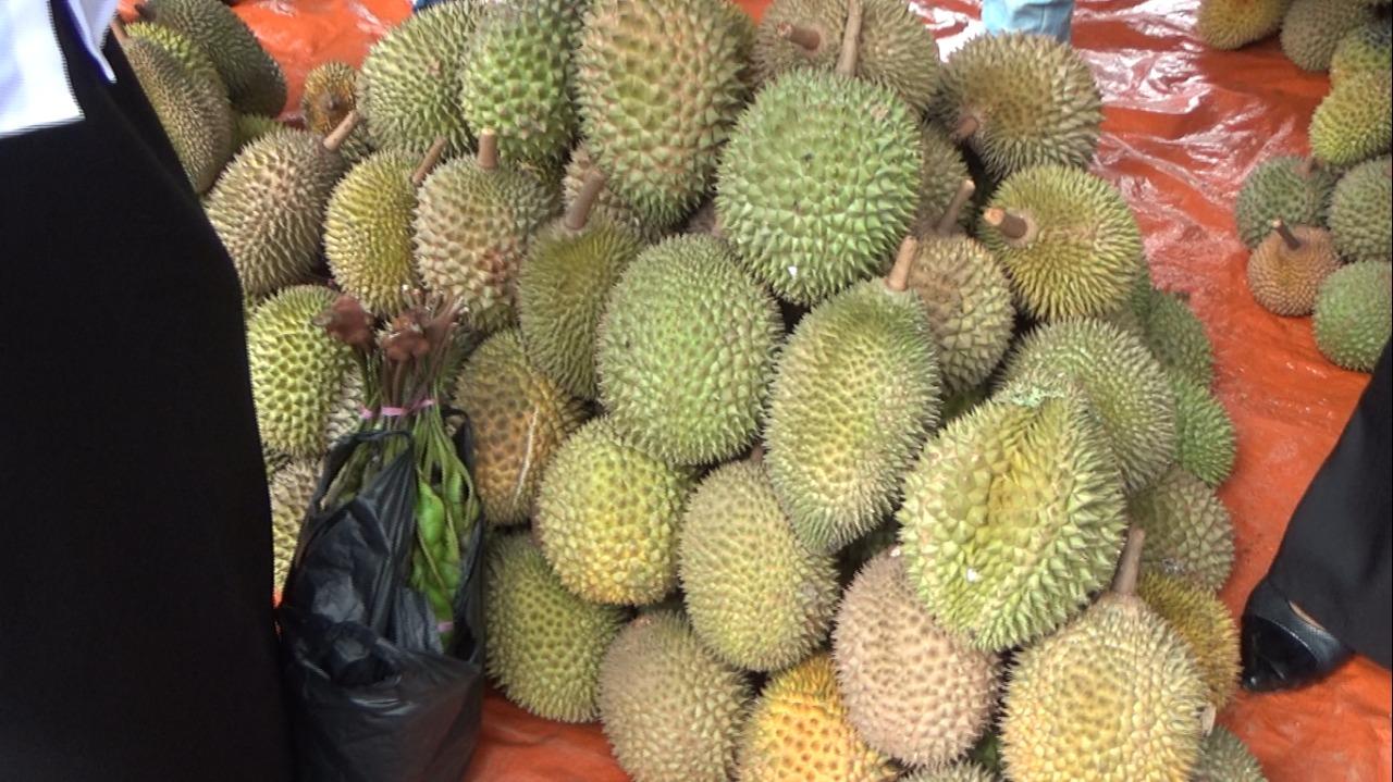 Danau Tamiyang Jadi Surga Sehari Pecinta Durian 1