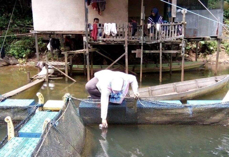 Rutin Ambil Sampel Air Sungai, Diskan Banjar Segera Susun Siklus Tahunan Tebar Ikan 45