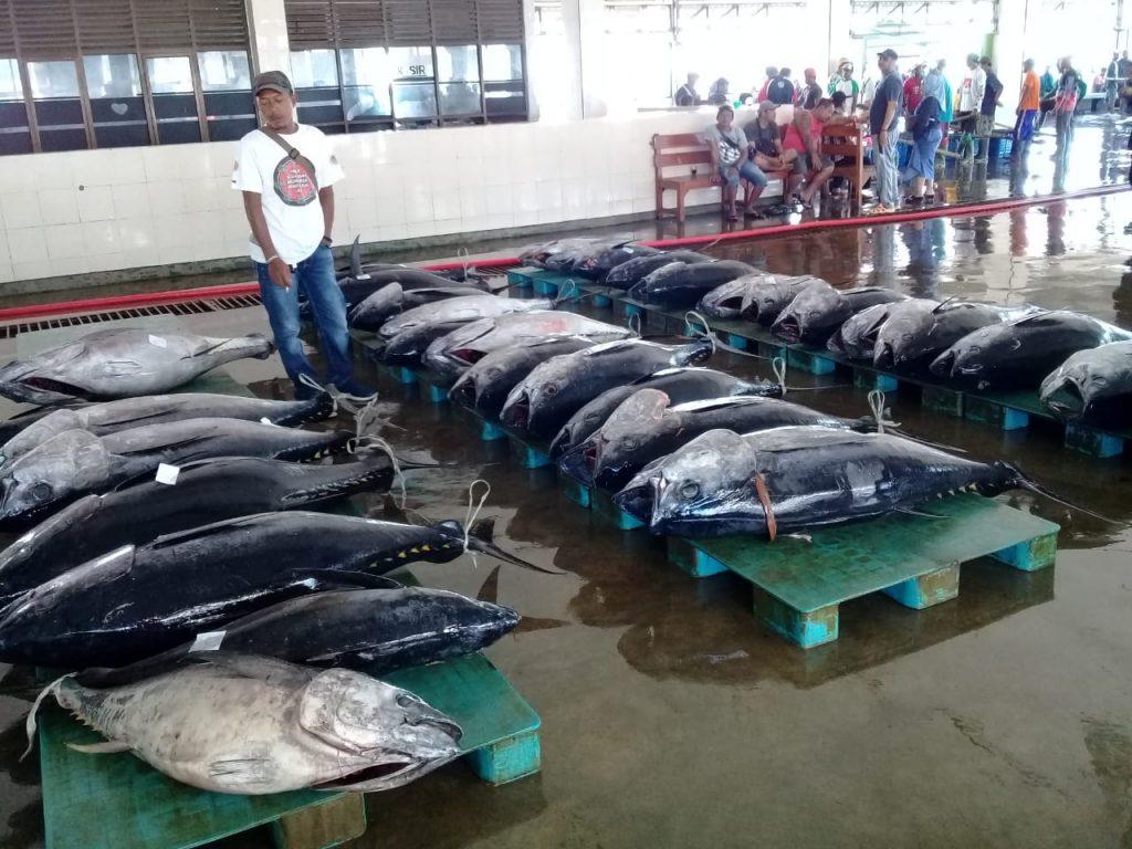 Tangkapan Ikan Nelayan Bisa di Tampung di Cold Storage UPT DJPT 9