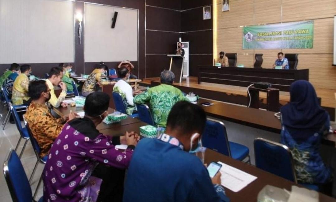 Bupati Batola: Petani Diharapkan Makin Semangat Garap Sawah 6