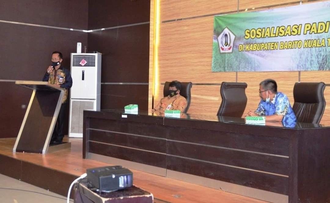 Bupati Batola: Petani Diharapkan Makin Semangat Garap Sawah 5