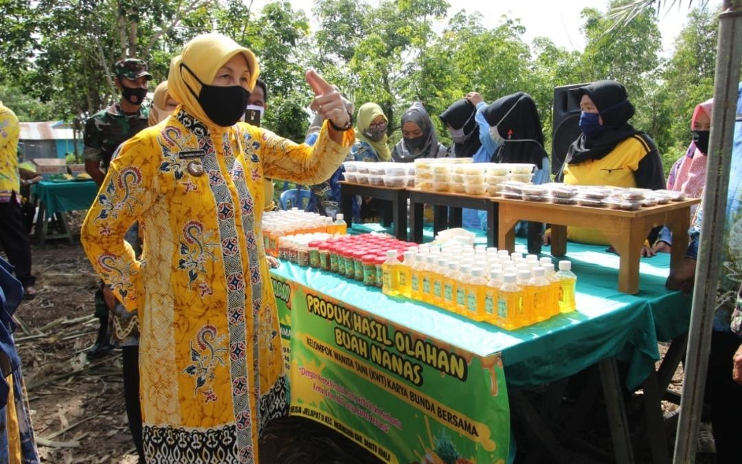 Bupati Batola Panen Raya Nanas di Jelapat II Mekarsari 5